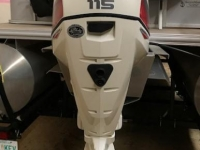 2016 Sunchaser DS22 CNF with Evinrude 115hp