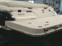 2013 Regal 1900 Bowrider
