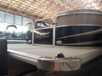 2012 SunChaser DS22 Pontoon Boat with Evinrude 115 HO